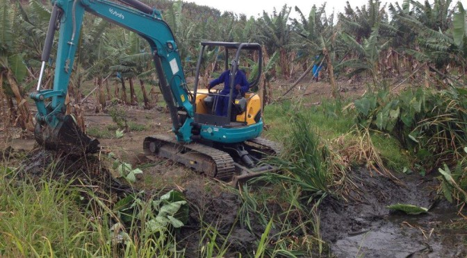 Nuts about the versatile Kubota U50 mini-excavator