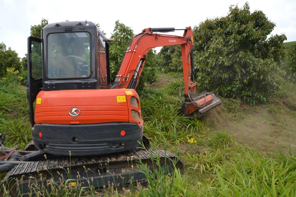 Kubota U50 CAB with Mulcher